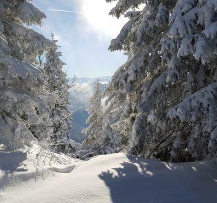 ski-1156460_1280
